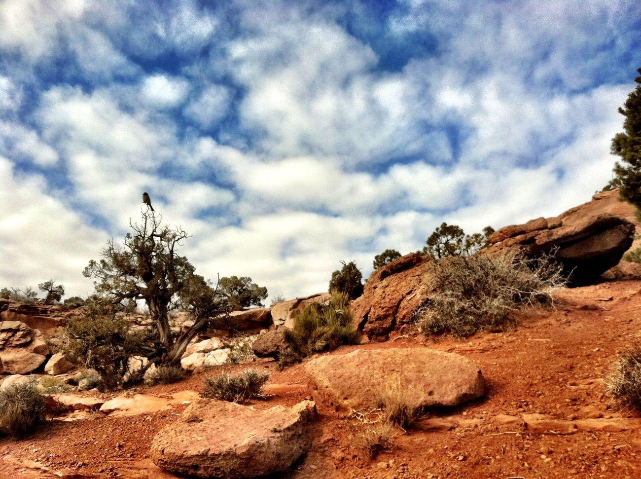 HDR Moab, Utah