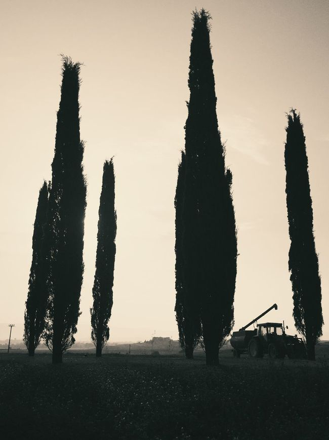 Monochrome Bw_collection Shootermag Streetphotography Tuscany