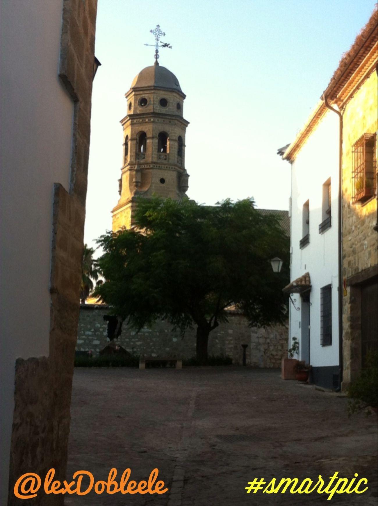 Tapas & aceite Baeza Gastronomía Andalucía Jaén