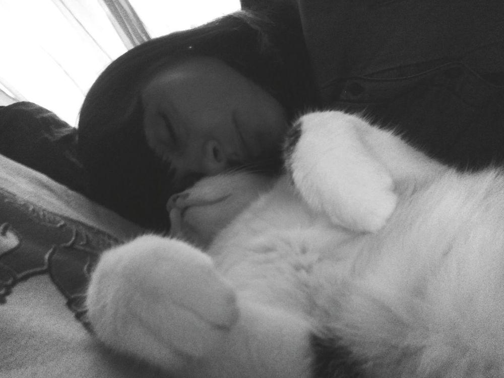 Relaxing Enjoying Life Love Amore Mio ❤ Felicity Gatto😸