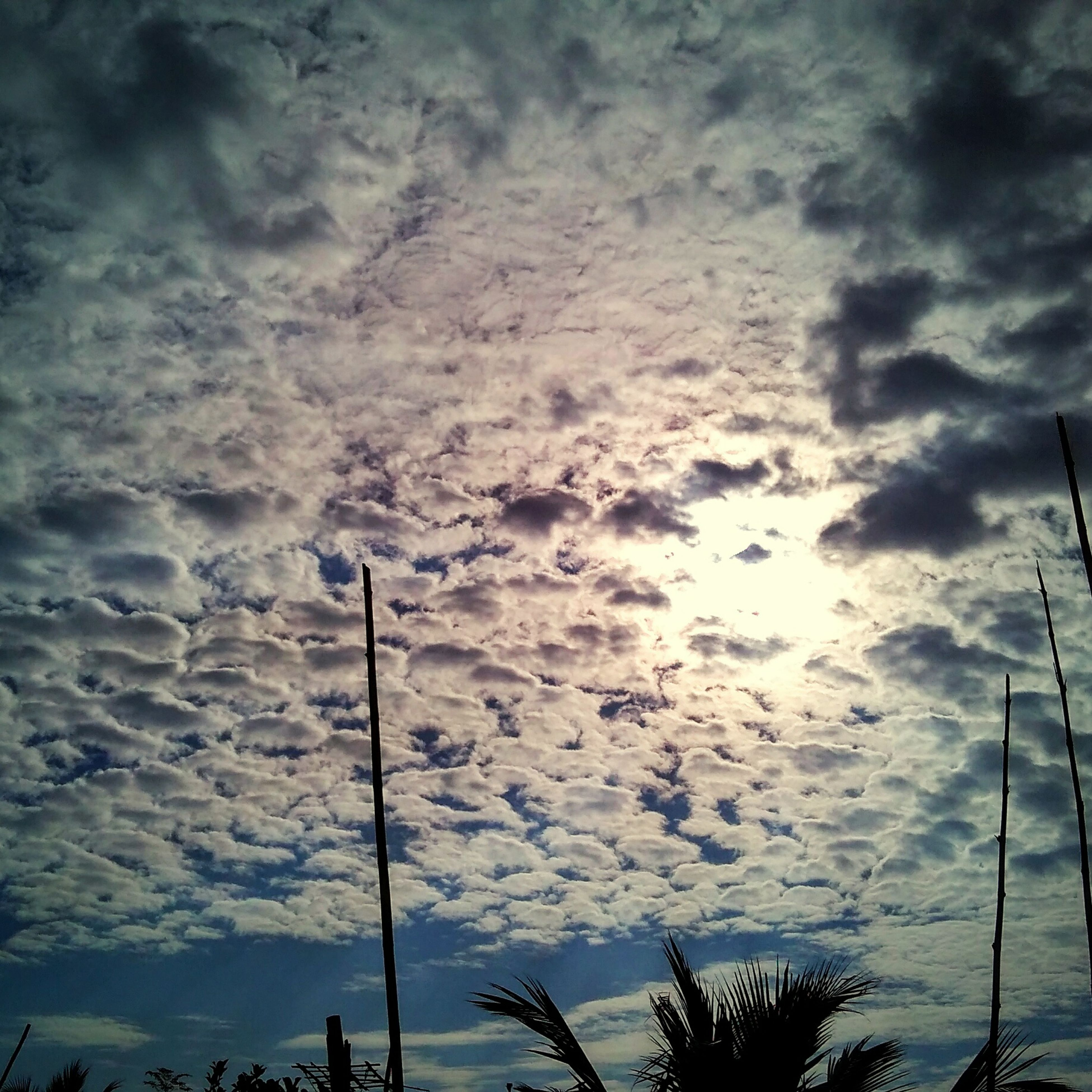 sky, cloud - sky, low angle view, cloudy, street light, silhouette, tranquility, weather, nature, beauty in nature, cloud, scenics, tranquil scene, overcast, dusk, sunset, lighting equipment, outdoors, no people, pole