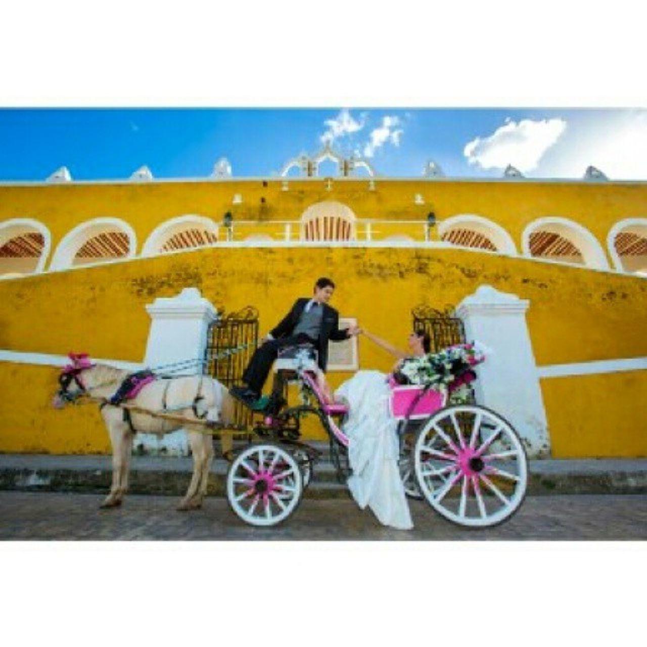 Canon 5dmarkll Boda Fotografo Foto Amor Weddinphotography Wedding Weddingphotographer Arte Arquitectura Caleza Caballo