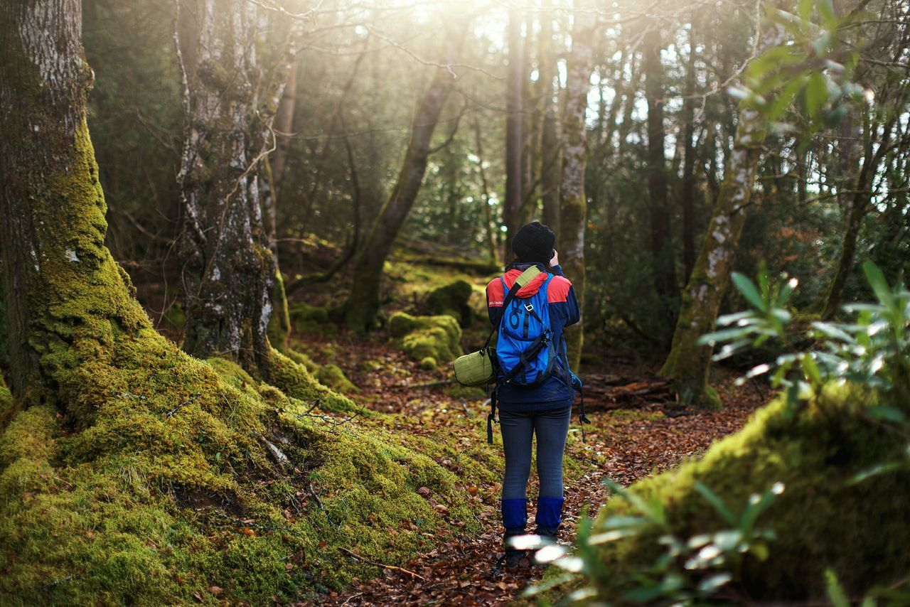 my girl. at kinlochewe, torridon. Landscapes With WhiteWall Girl Today's Hot Look Path Forest Paths Trees Landscape Hiking Adventure Adventure Buddies Hello World Open Edit Travel Journey Traveling Share Your Adventure Hike My Favorite Photo