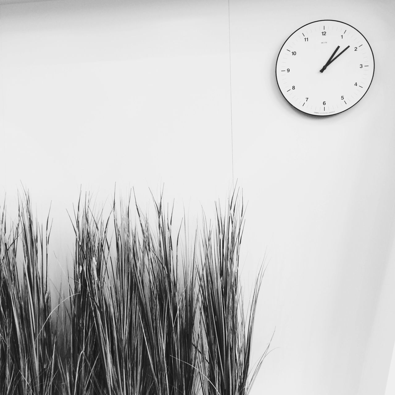 Beautiful stock photos of clock, Circle, Clock, Copy Space, Growth