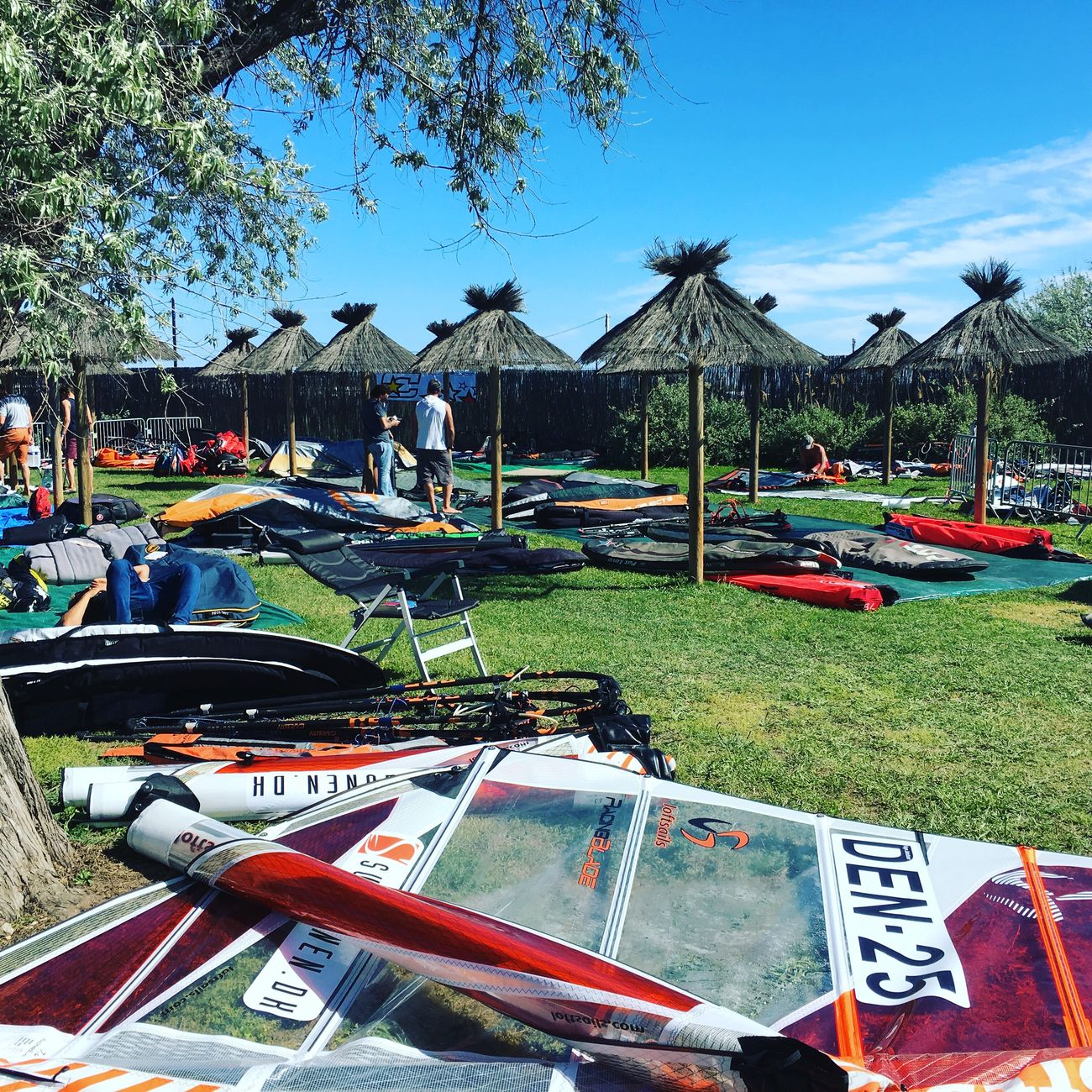 Windsurfing today Day Outdoors Tree Grass Beach Tent No People Nature Sky Windsurf Competition Windsurf Nature See