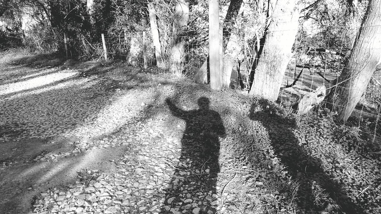The Shadows.. Light And Shadow Eye4photography  Showcase: January Black&white Hanging Out Me And My Son Outdoors Trees Nature Shadow People Shadow