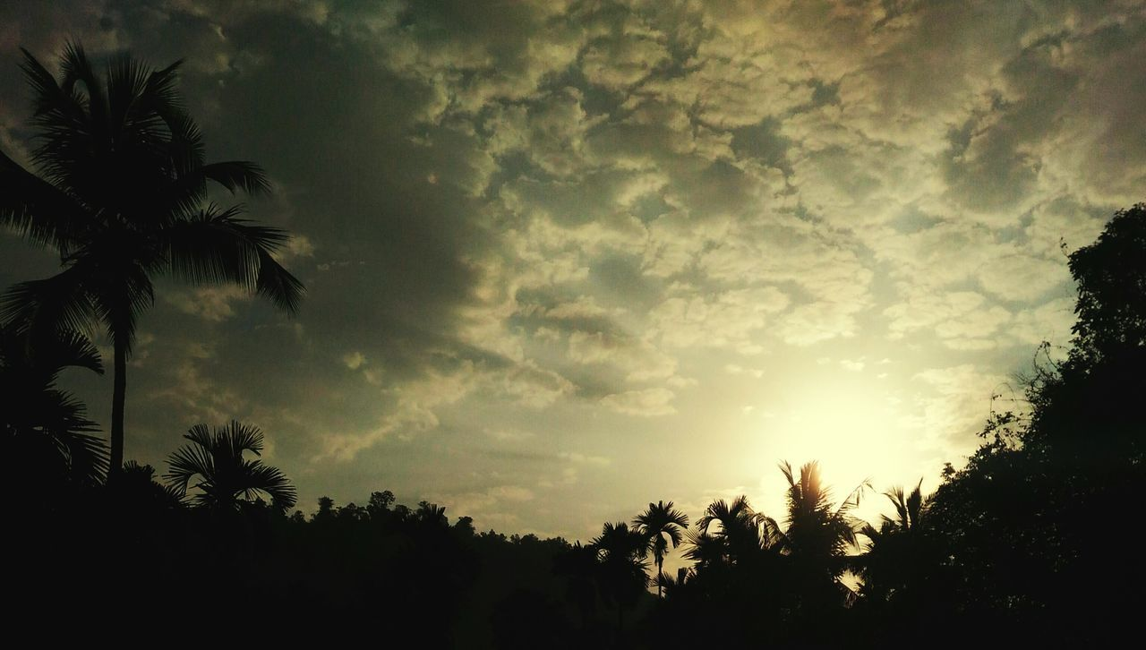 Rising sun Hello World First Eyeem Photo