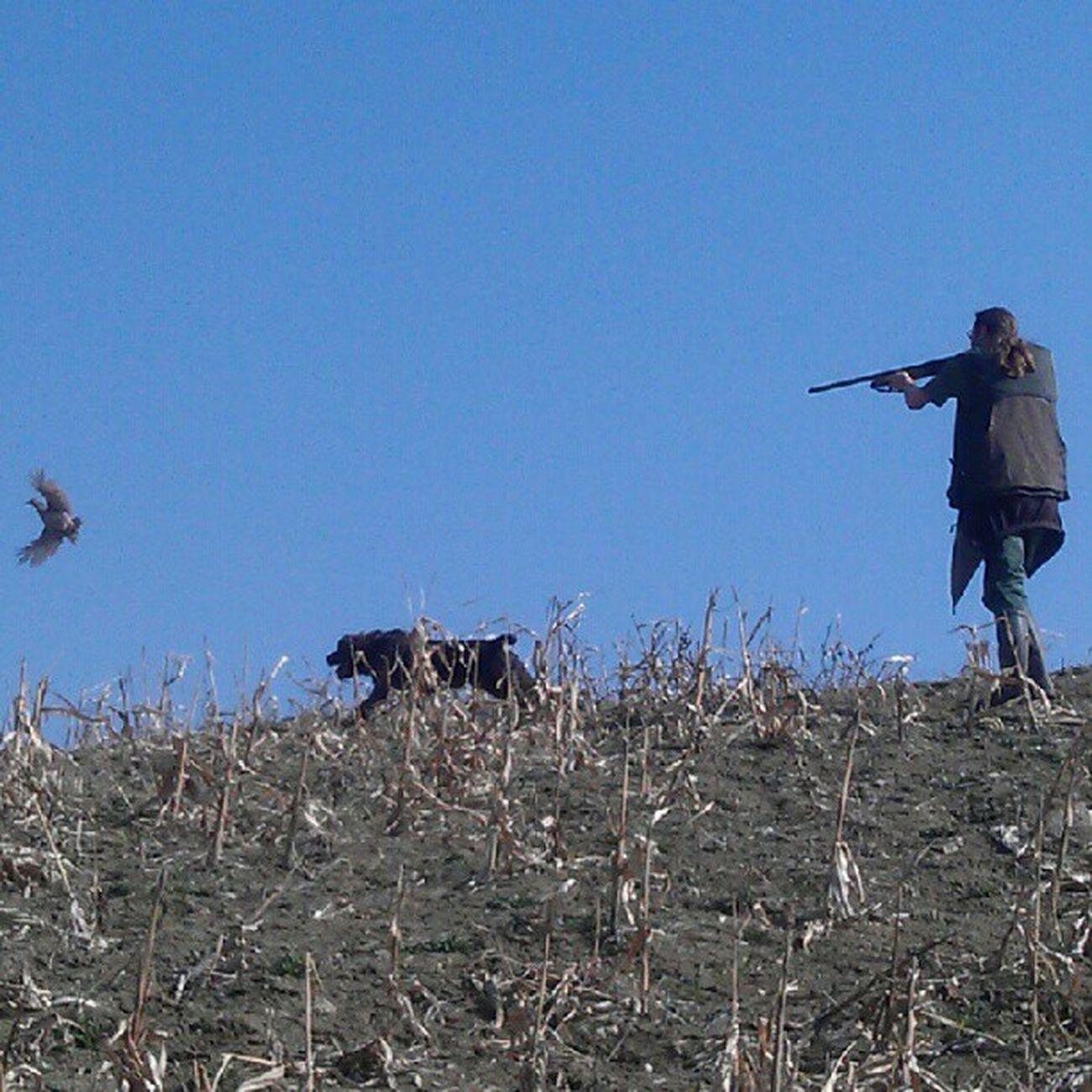 a Caccia con mio fratello Hunter Dog Born To Be Wild On The Road