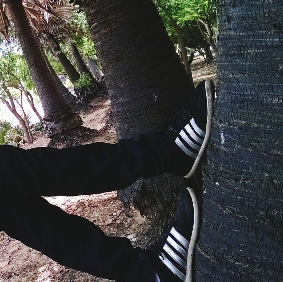 Lieblingsteil Tree Outdoors First Eyeem Photo Standing Selling Photos Selling Art Lifestyles EyeEmNewHere