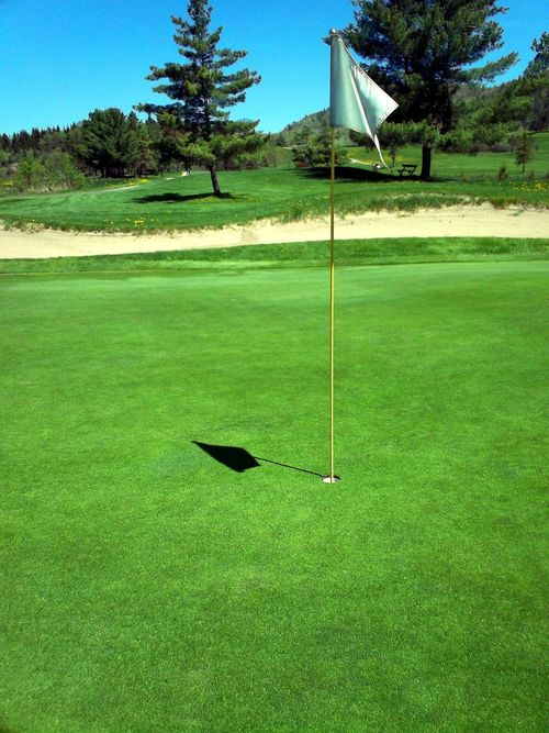 Day Flagstick Golf Golf Course Golf Flag Golf Green Golf Greens Golfing Grass Green - Golf Course Green Color Nature Outdoors Scenic Golf Course Sport Tree