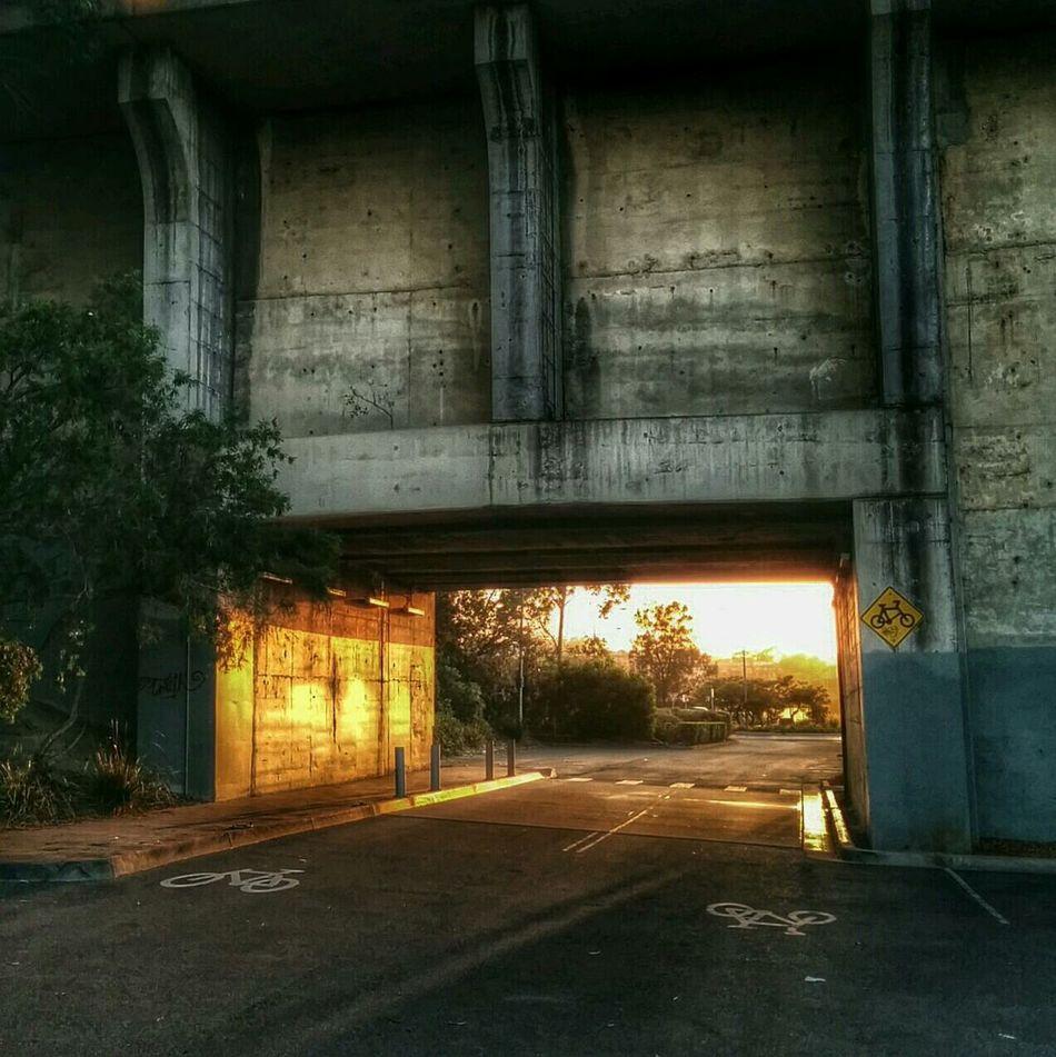 Light Tunnel Morning