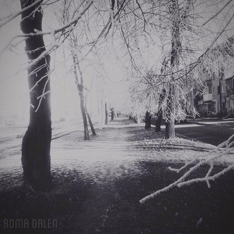 B&w Photography Monochrome Art Picture City Road Romadalen