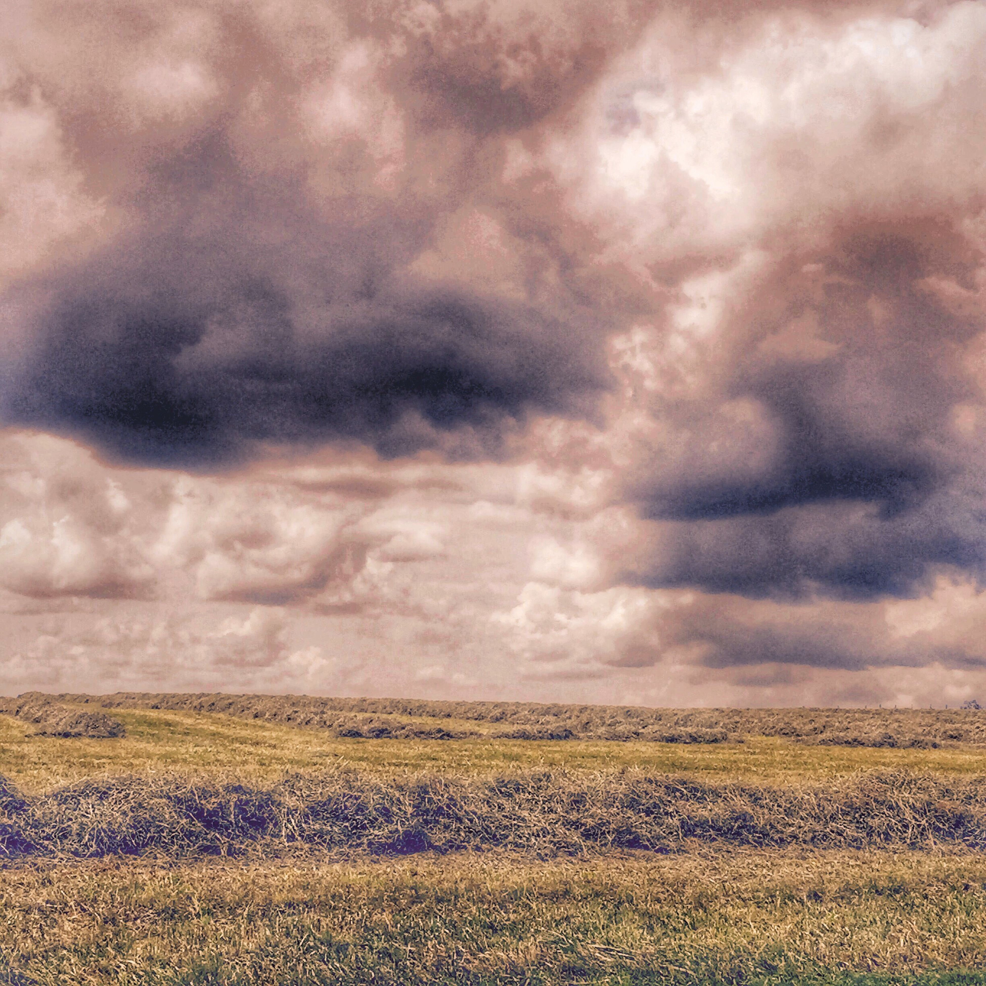 sky, cloudy, cloud - sky, landscape, tranquil scene, field, tranquility, scenics, overcast, beauty in nature, weather, nature, storm cloud, rural scene, agriculture, cloud, cloudscape, dramatic sky, horizon over land, idyllic