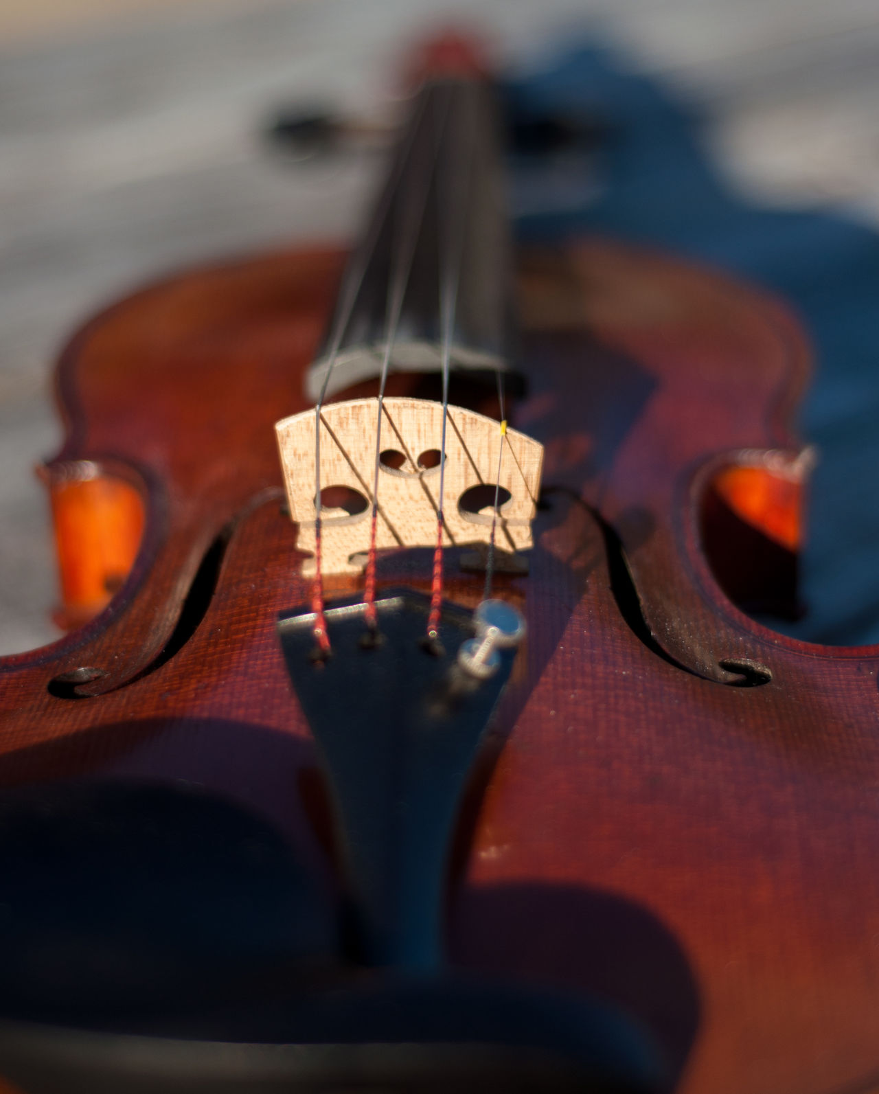 I started playing the violin in 6th grade as a part of a school orchestra program. I've had this particular instrument since 2002. The instrument is French made circa 1910-1920. I hope you enjoy these photos as much as I enjoy playing my beautiful violin! Aged Wood Arts Culture And Entertainment Bridge Depth Of Field Durham NC Front Side High Angle View Music Musical Instrument Natural Beauty Outdoors Strings Sunlight Tail Piece Violin