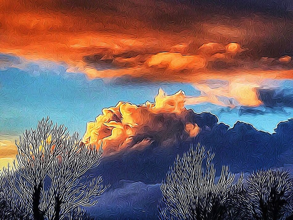 Tangled FX Beauty In Nature Nature Tranquil Scene Sunset Sky Tranquility Scenics Sunlight Cloud - Sky NEM Clouds