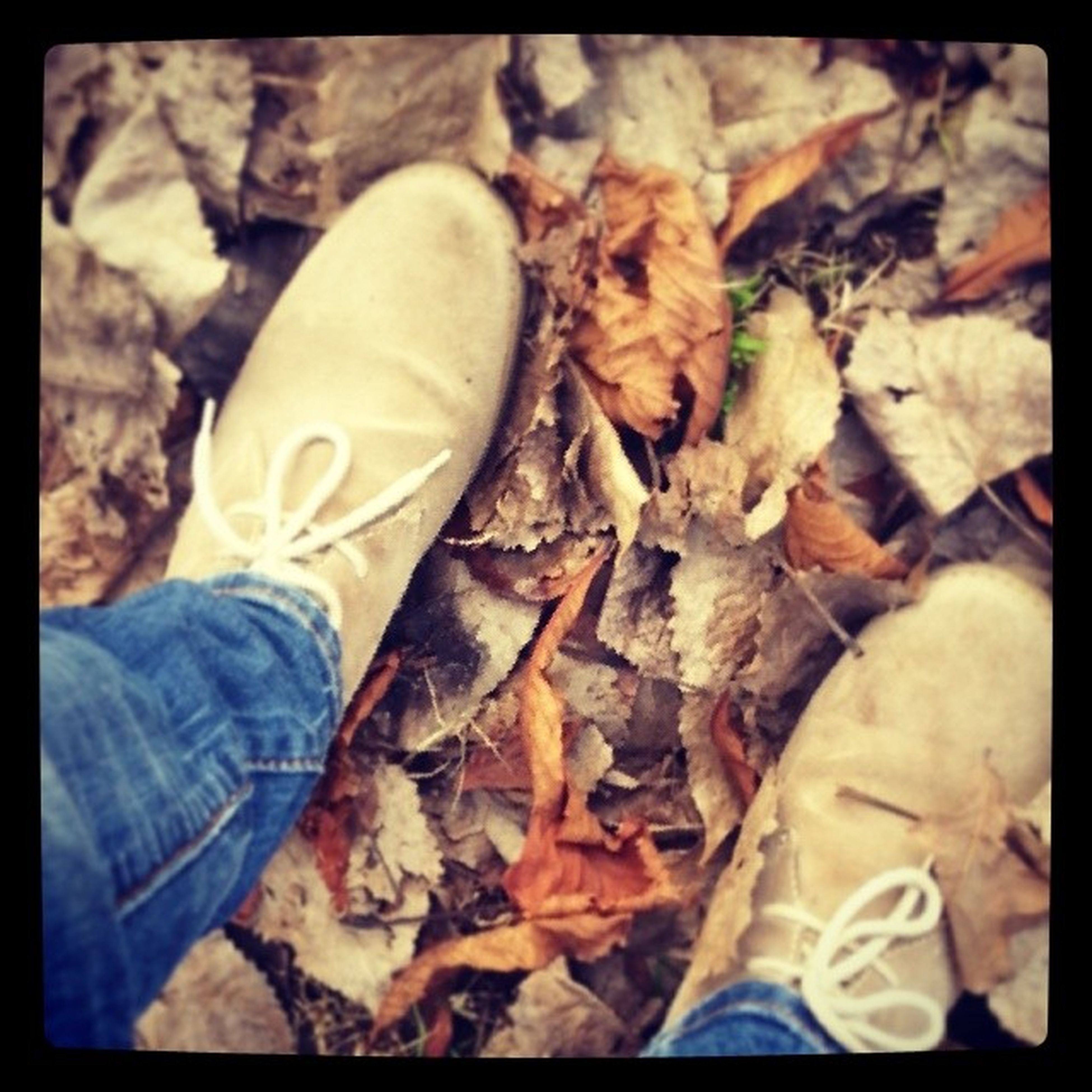 transfer print, auto post production filter, leaf, high angle view, dry, low section, close-up, shoe, autumn, leaves, person, field, day, ground, outdoors, personal perspective, fallen