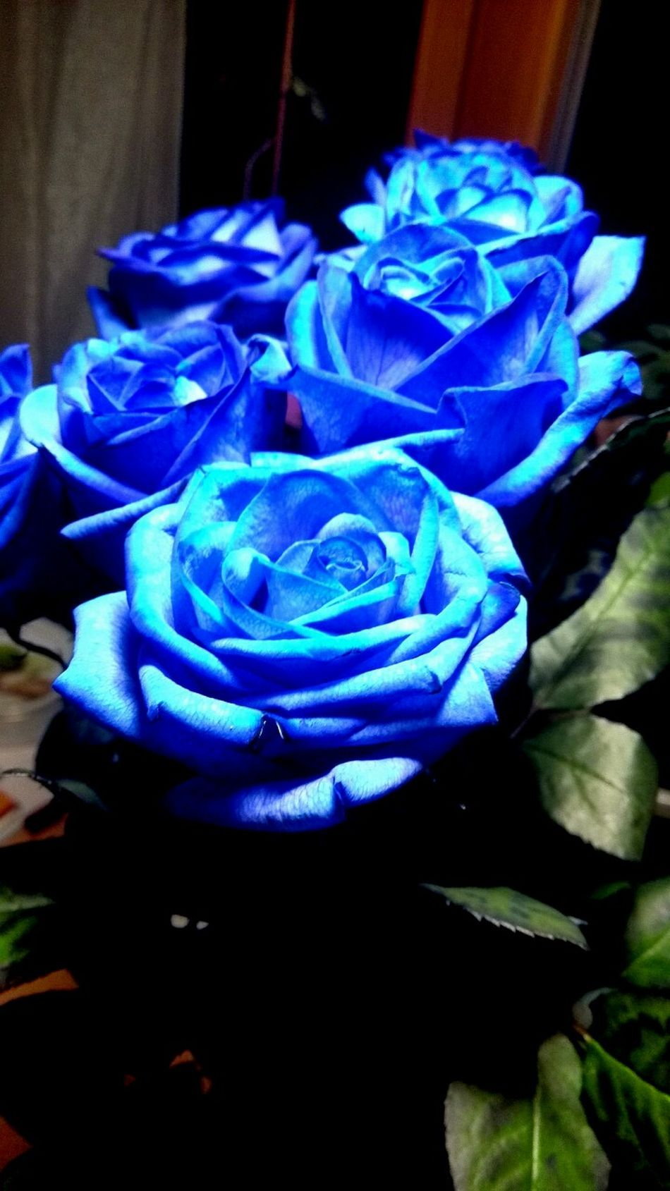 Flowers Bouquet Memories Roses Blue Beautiful Special Day Lovely Fresh Sweet Smell