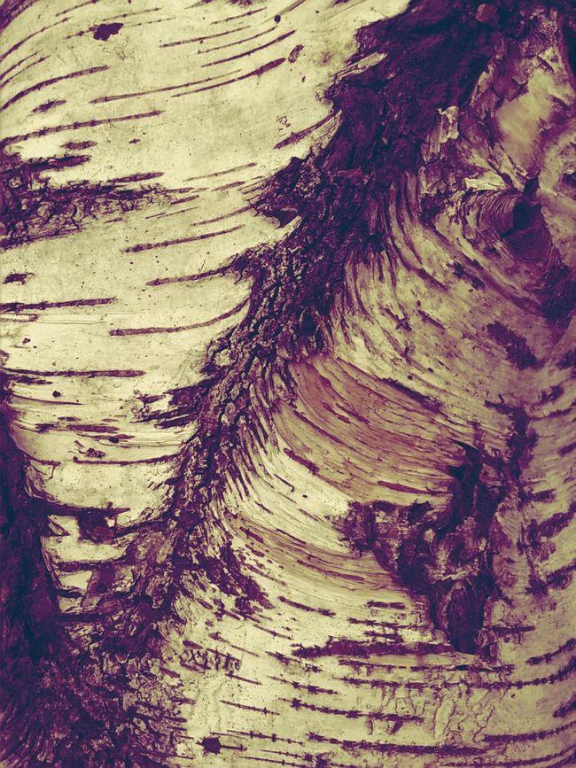 Fashion Pattern, Texture, Shape And Form Tree So NineNineteen