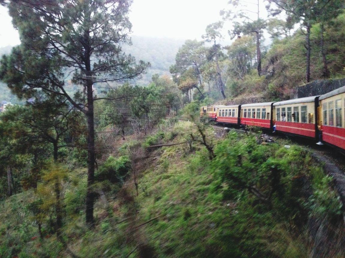 Taking the toy train up the Himalayas. India Shimla Himalayas Train Toytrain