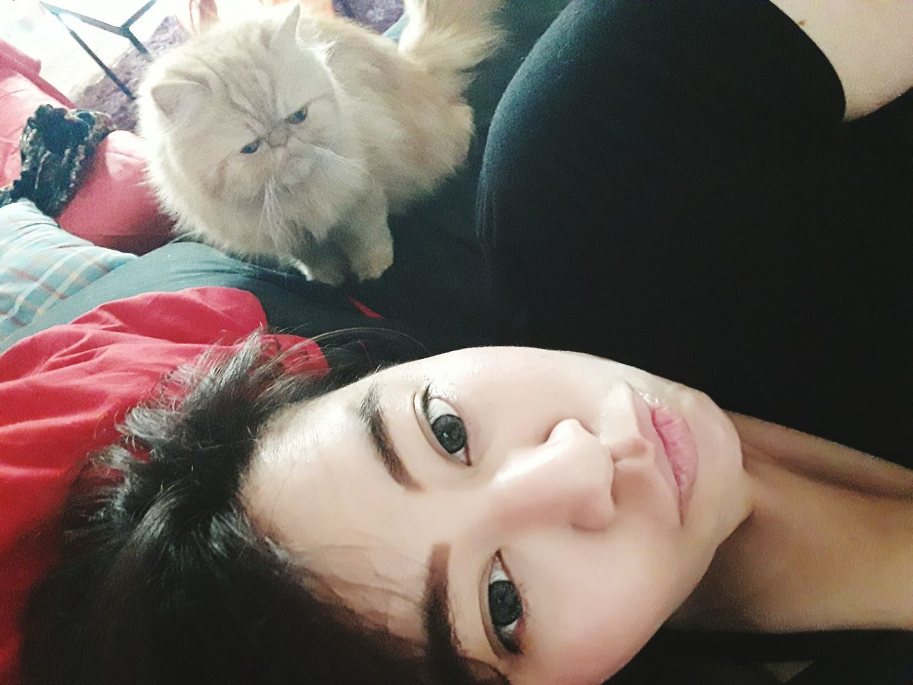 with my fluffy boss Portrait Close-up Pets Self Portrait Self Potrait Self Portrait Around The World Selfie✌ Selfie Portrait Smiling Cat Cats Cat♡ Weekend Persian Cat  Catoftheday Cats 🐱 Cat Lovers Cats Of EyeEm Selfportrait Selfies Selfie ✌