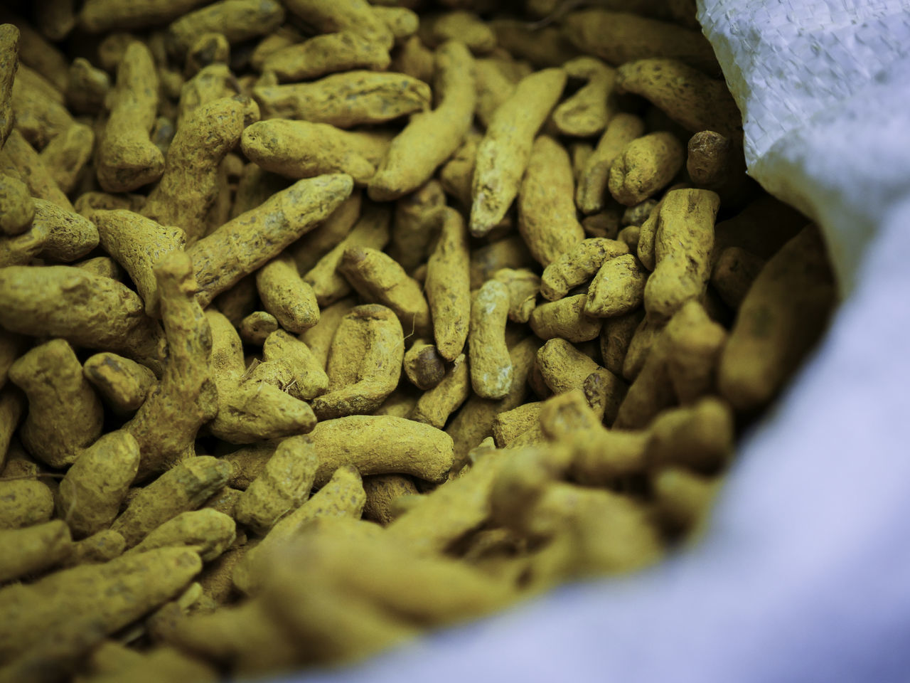 Asian Spices Close-up Curcuma Curcuma Root Curcumin Root Day Exotic Food Food Freshness Horizontal Indian Spices Medicinal Plant No People Spice Spice Shop Turmeric  Turmeric Root Yellow Yellow Color
