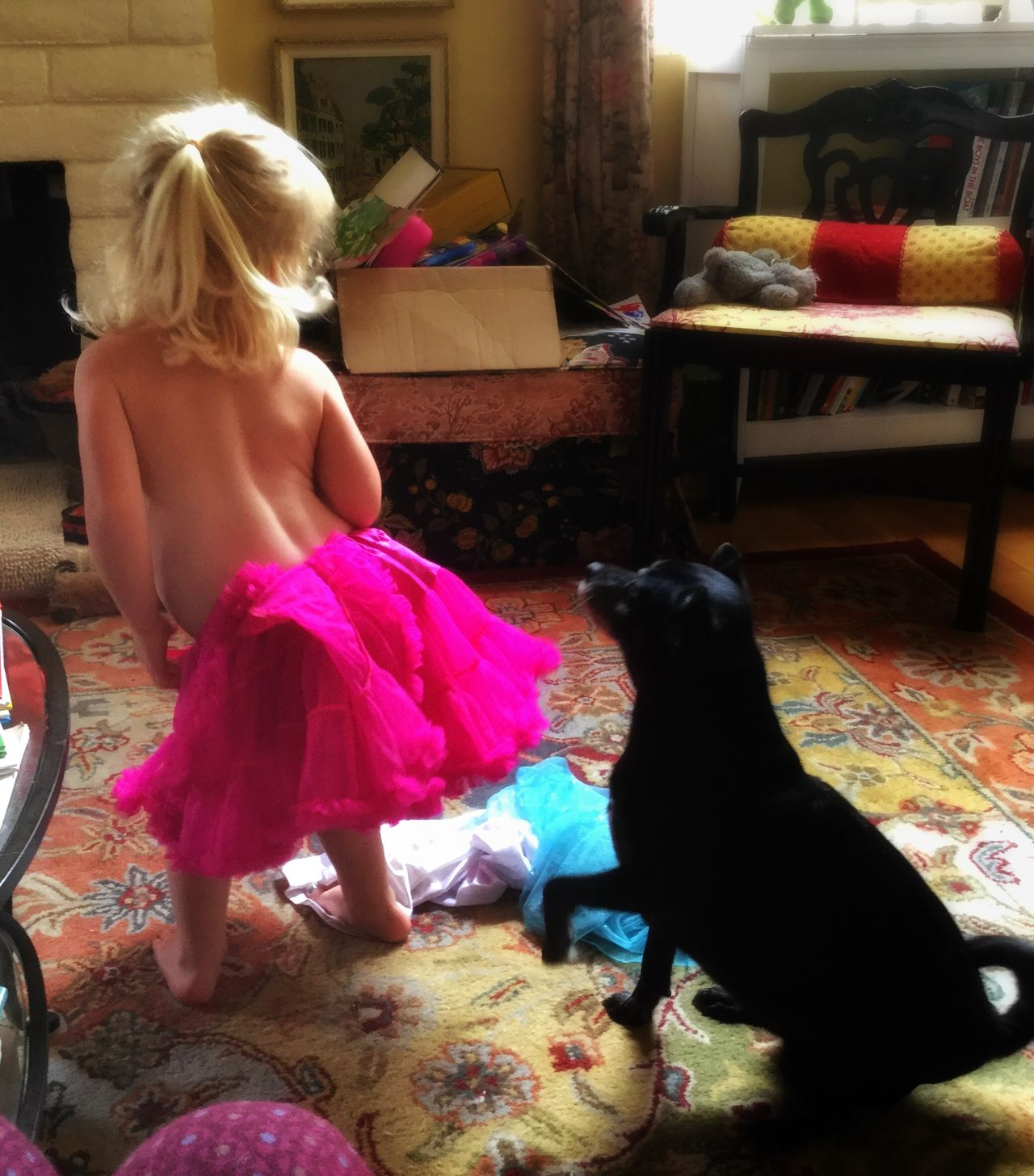 Little Blonde Girl Tutu Dog Dog Yoga Little Girl Dancing Colorful Playful Dancing Dancing Girl Indoors  Pink Tutu Black Dog Blonde Hair Booty Shake Dog Santa Rosa CA
