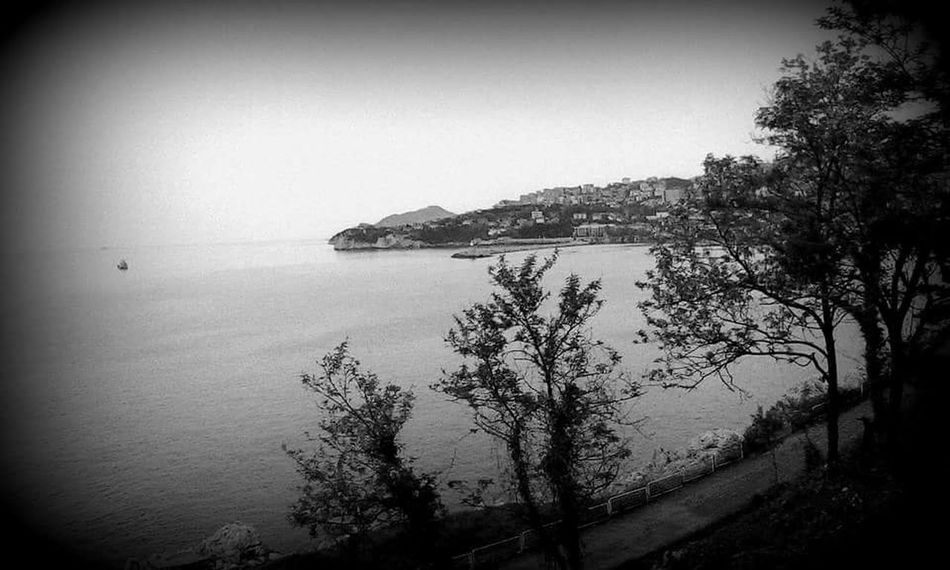 Cati Cafe Blackandwhite Black Sea♥