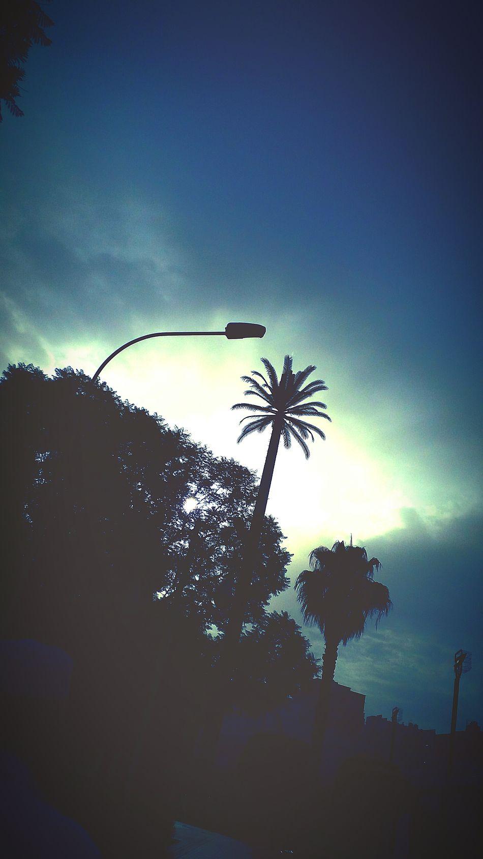 Such a beautiful day it was 😍😍😍 First Eyeem Photo Newuseroneyeem First Eyeem Photo