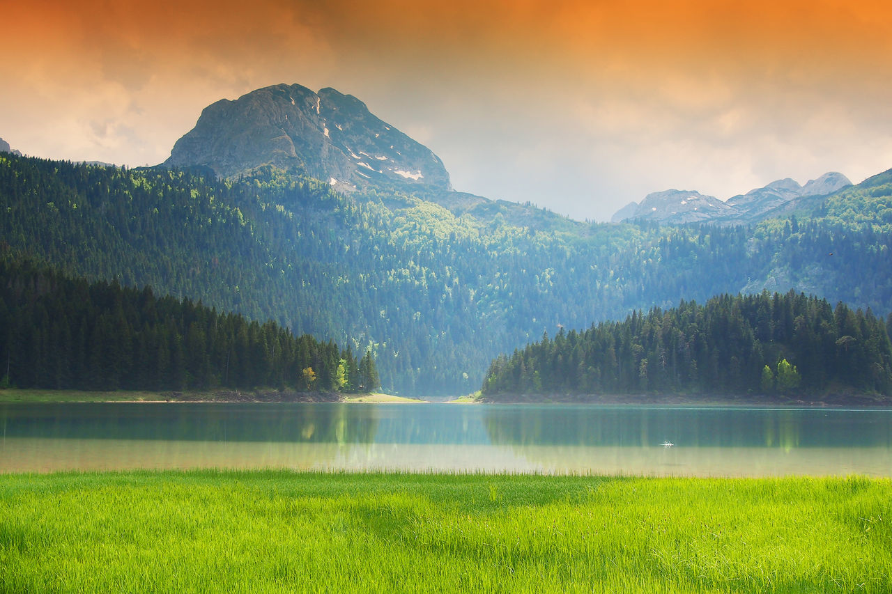 nature, beauty in nature, green color, scenics, tranquility, grass, tranquil scene, mountain, water, no people, lake, outdoors, idyllic, day, growth, tree, landscape, mountain range, sky