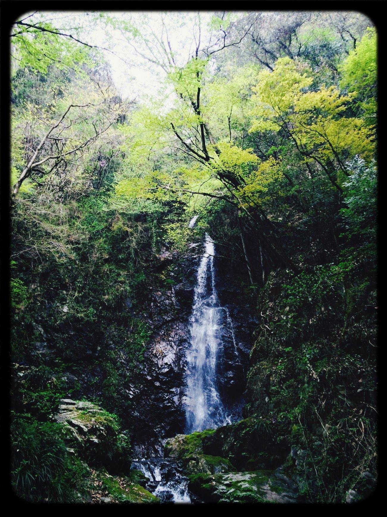 Ayahiro fall