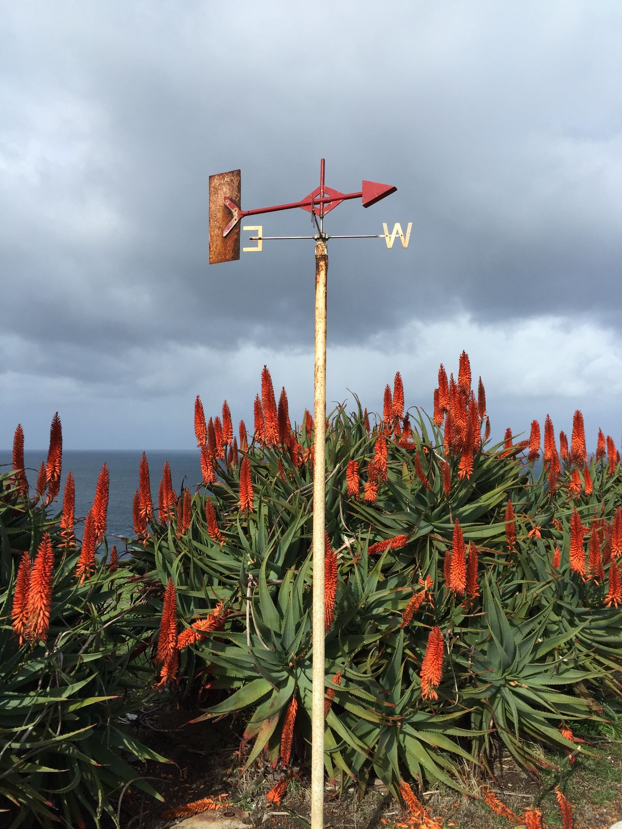 Where does the wind blow? Anemometer Beauty In Nature Cloud - Sky Nature No People Outdoors Sky Tranquil Scene