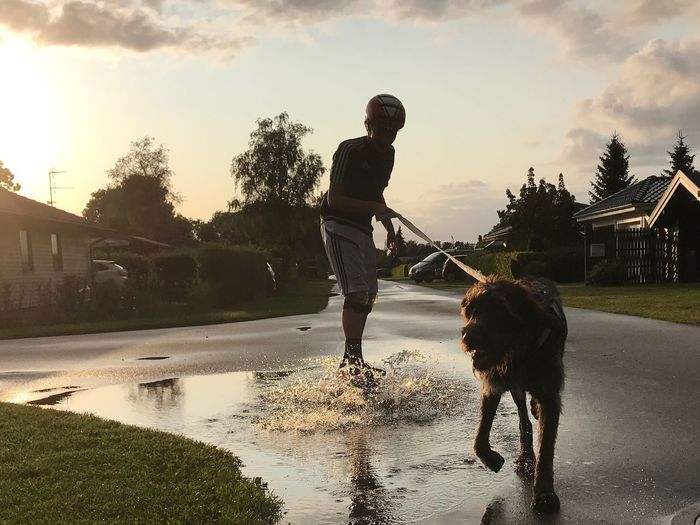 Pet Portraits Dog Water One Person Outdoors Skateboarding Pets Lifestyles