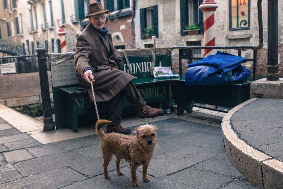 City Dog Italy People Pets Streetphoto Streetphoto_color Streetphotography Venice