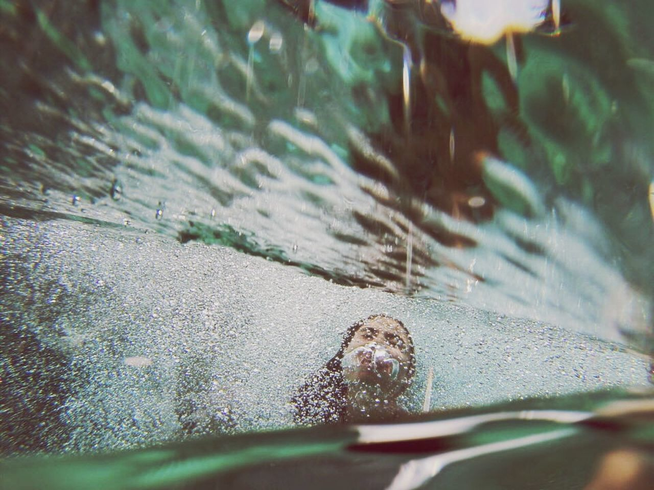nature, close-up, one animal, selective focus, day, no people, water, outdoors, animal themes, leaf, animals in the wild, beauty in nature, fragility, undersea