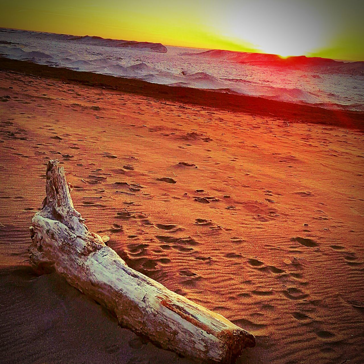 Presque Isle Erie Pa Log Loginsand Snow Covered Ice Covered Waters Sunset Lakesunset Footsteps In The Sand