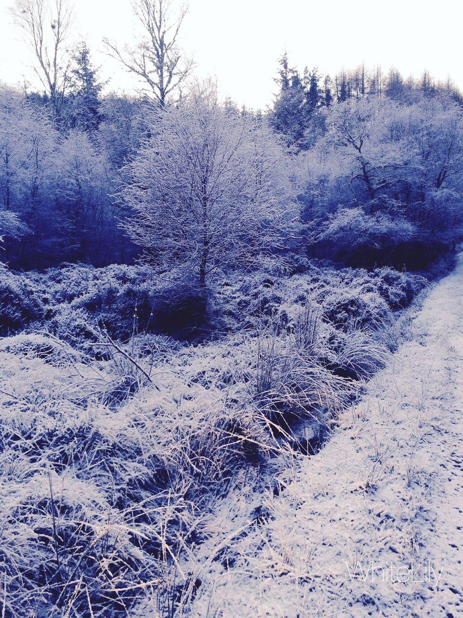 Mountains Snow ❄ Highlands