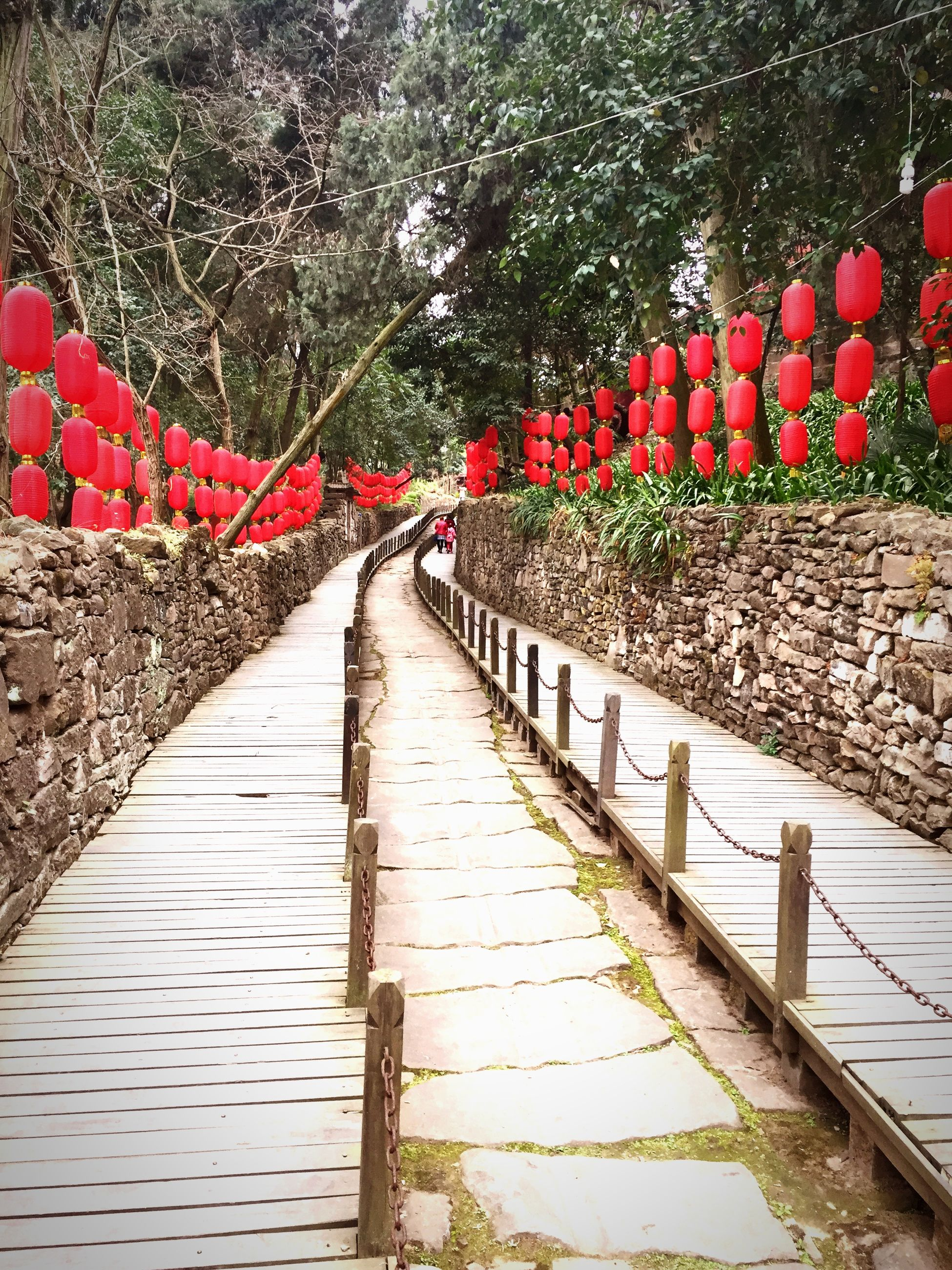 the way forward, connection, built structure, bridge - man made structure, red, architecture, tree, railing, footbridge, diminishing perspective, vanishing point, day, bridge, outdoors, nature, walkway, tranquility, no people, long, transportation