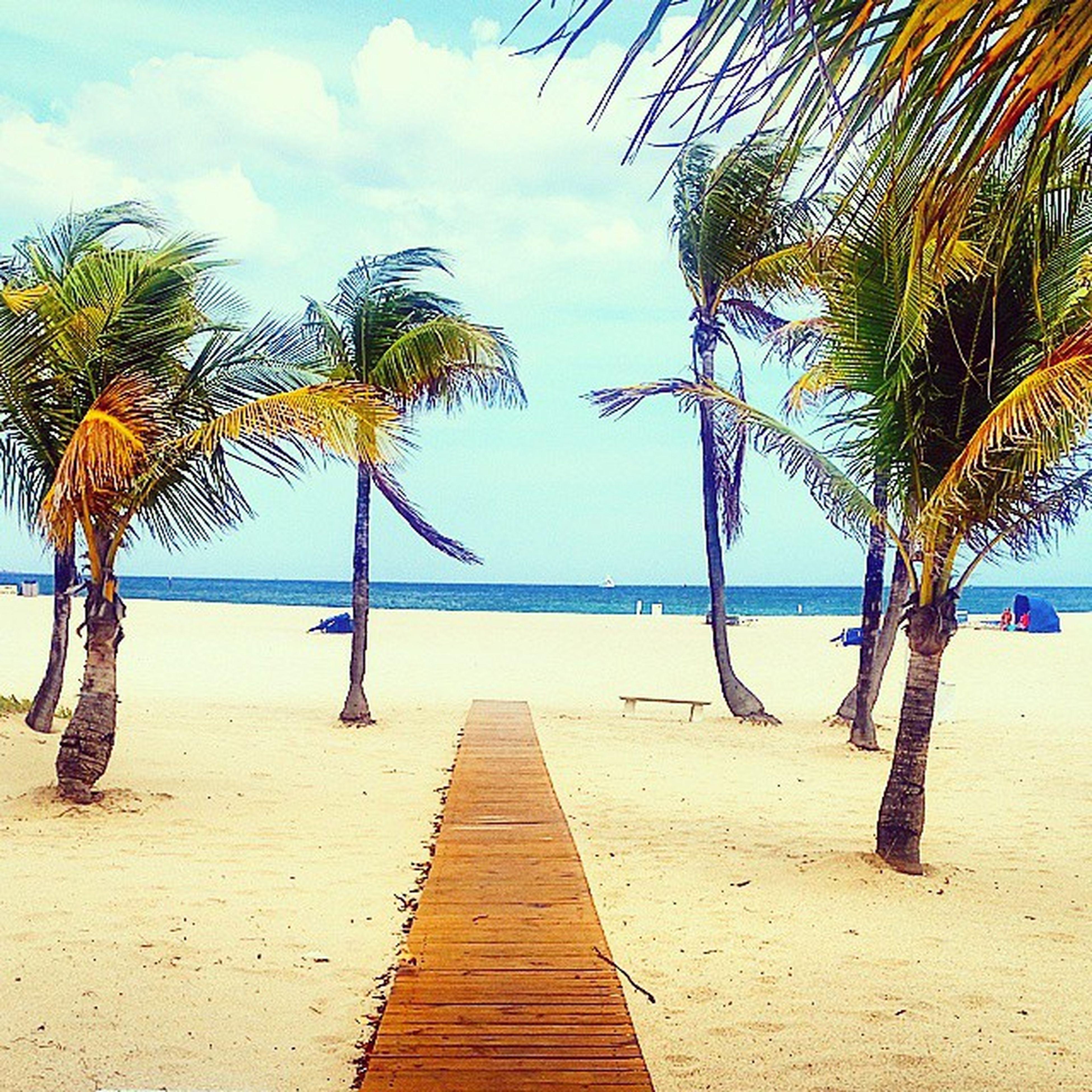 Morning! Florida Beachbum Beachthug Justpopup