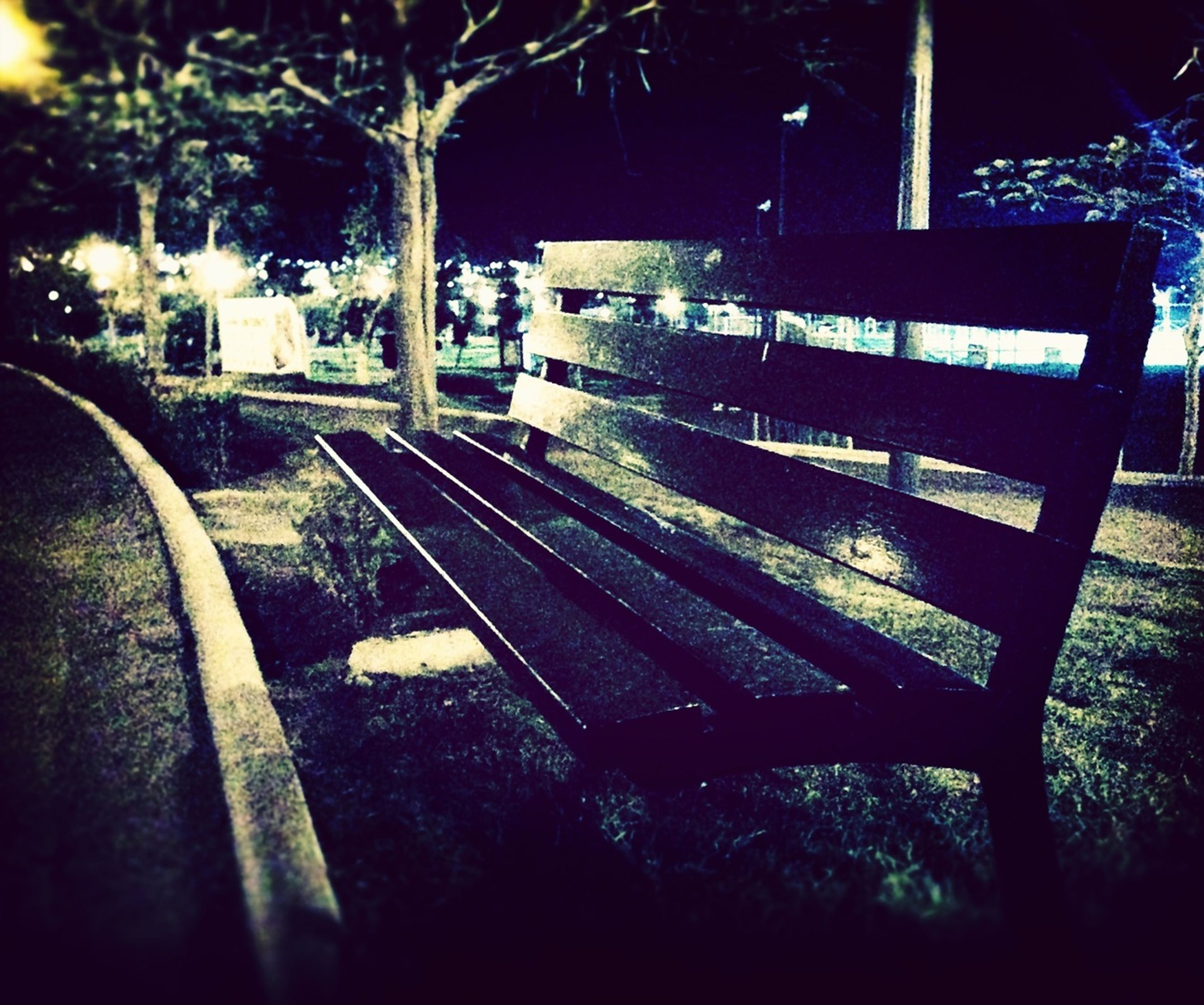 tree, transportation, built structure, night, architecture, shadow, street, sunlight, building exterior, outdoors, land vehicle, empty, no people, illuminated, mode of transport, growth, absence, bridge - man made structure, railing, dark