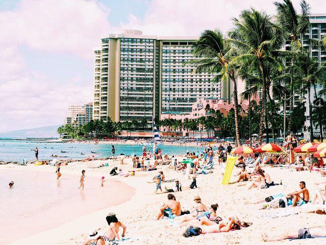 Waikiki Beach Palm Tree Summer Vacations Outdoors Sand Sea Waikiki Beach Beach Walk Water