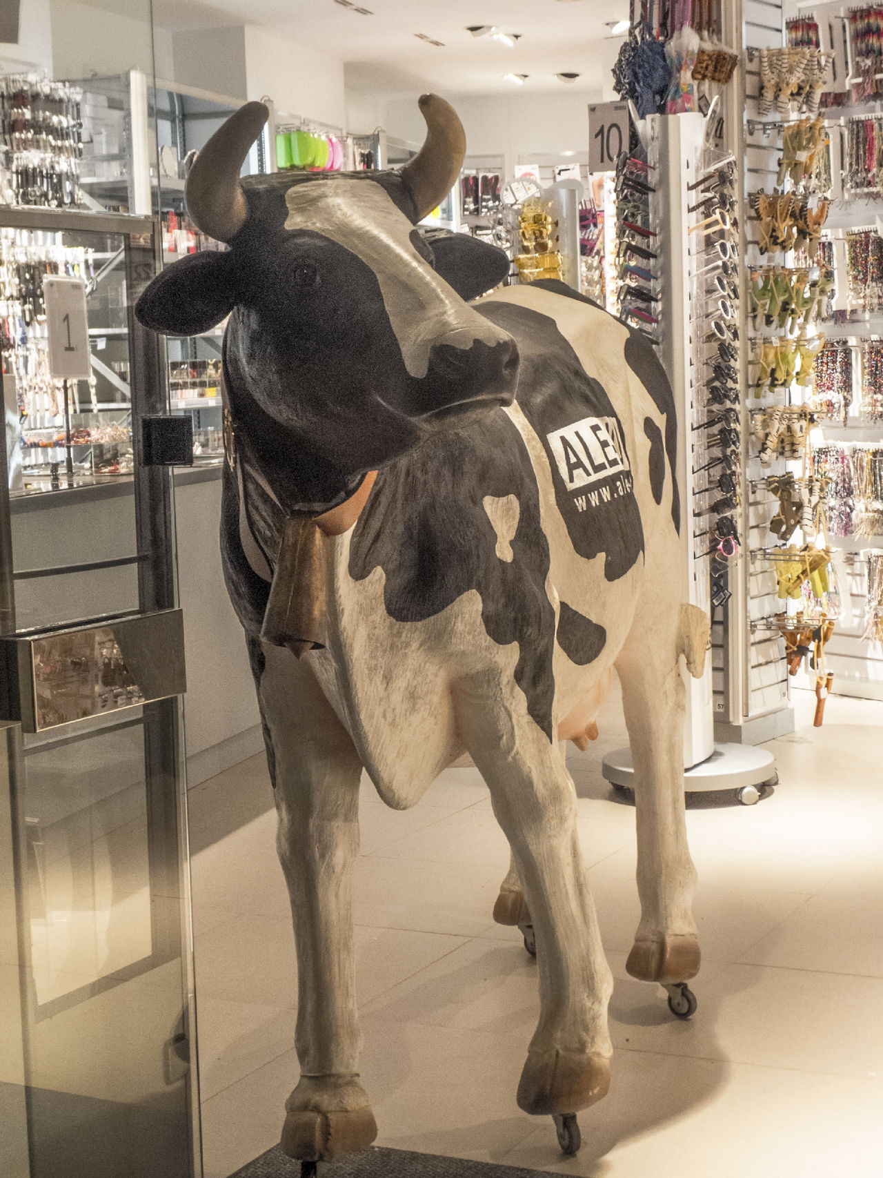 Hola Advertisement Advertising Signs Animal Themes Bovine Bovine Beauty Day Display Fake Bovine Fake Cow Full Length Indoor Cow Indoors  Mammal No People Rear View Standing