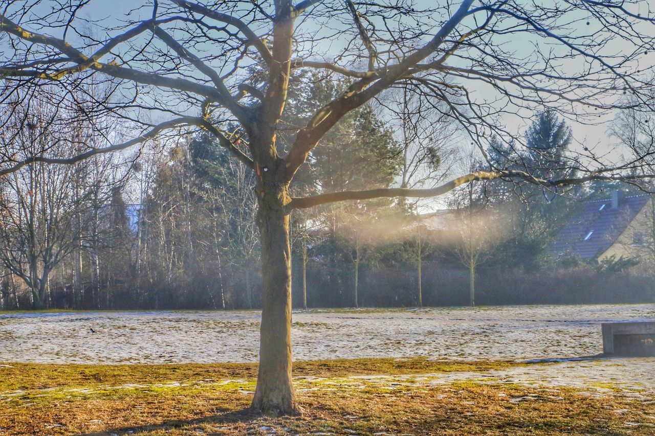 HDR Nature Beauty In Nature Sky Winter Outdoors Tree Cold Temperature Water Day Love Plant Lovely Followforfollow Follow4follow Canon70d Berlin City Followme Follow Low Angle View The Week Of Eyeem The Weekend On EyeEm The Week On Eyem ❤