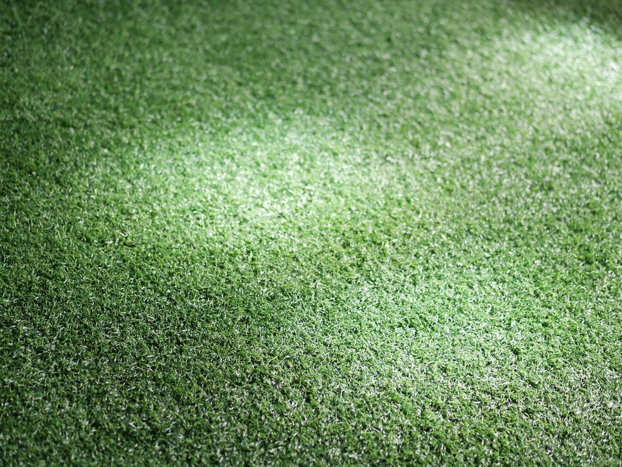 grass, green color, playing field, full frame, backgrounds, sport, lawn, turf, field, no people, soccer field, high angle view, grass area, day, nature, outdoors, american football field, golf course, green - golf course, competitive sport, close-up, stadium