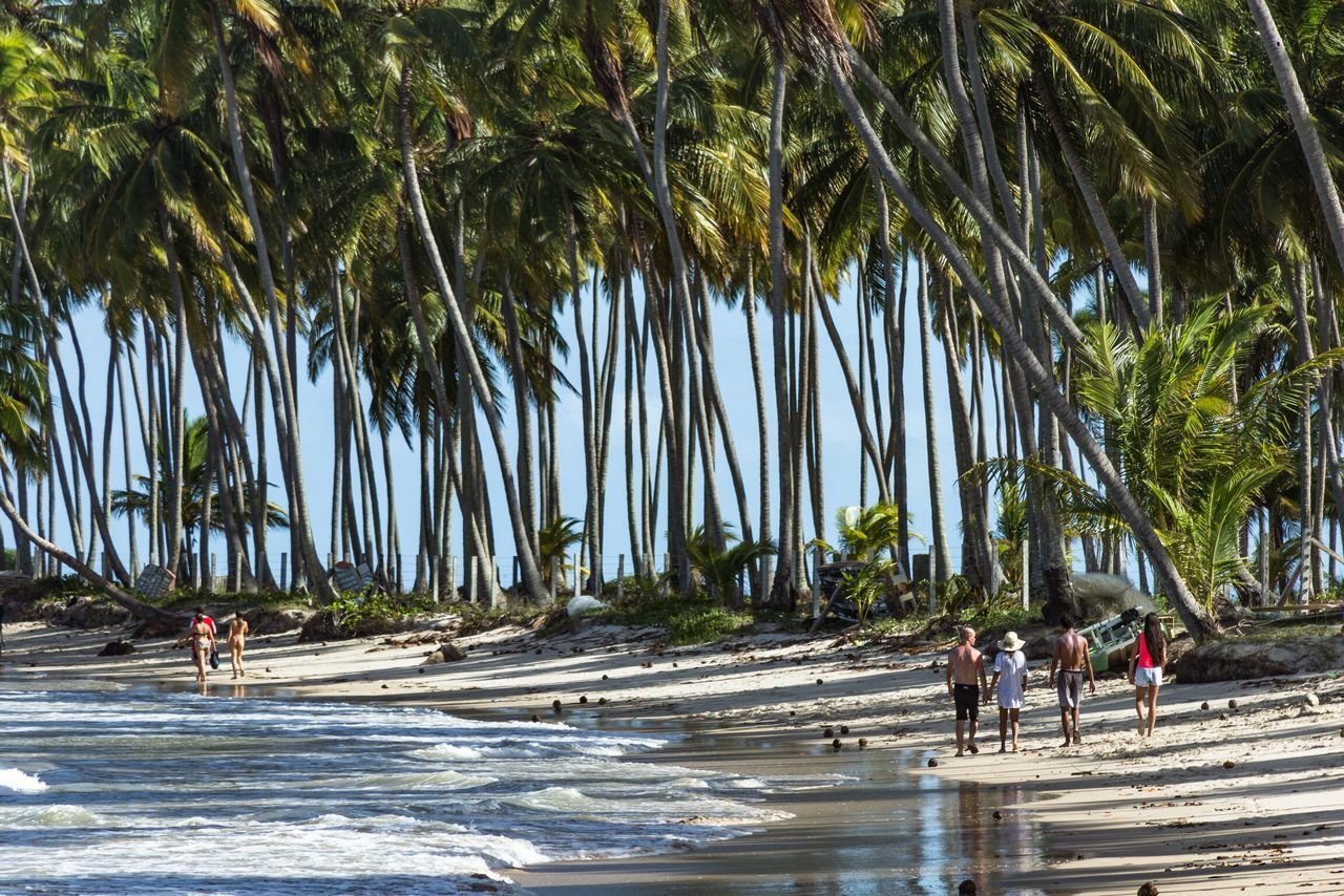 Praia Dos Carneiros Pernambuco Brasil Brazil Beach Beach Photography Praia Shore Tropical Tropical Paradise Tropical Beach Nature Composition Outdoors Outdoor Photography Relaxing Relax Vacation Holiday Férias Travel Viagem Showcase April The Essence Of Summer Feel The Journey Live For The Story