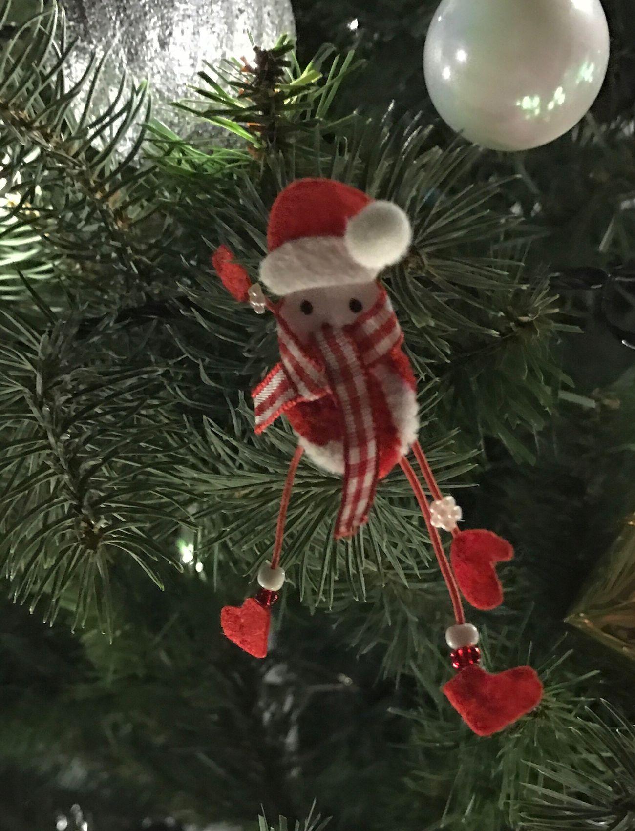 Christmas Christmas Tree Christmas Decoration Christmas Time Christmas Around The World
