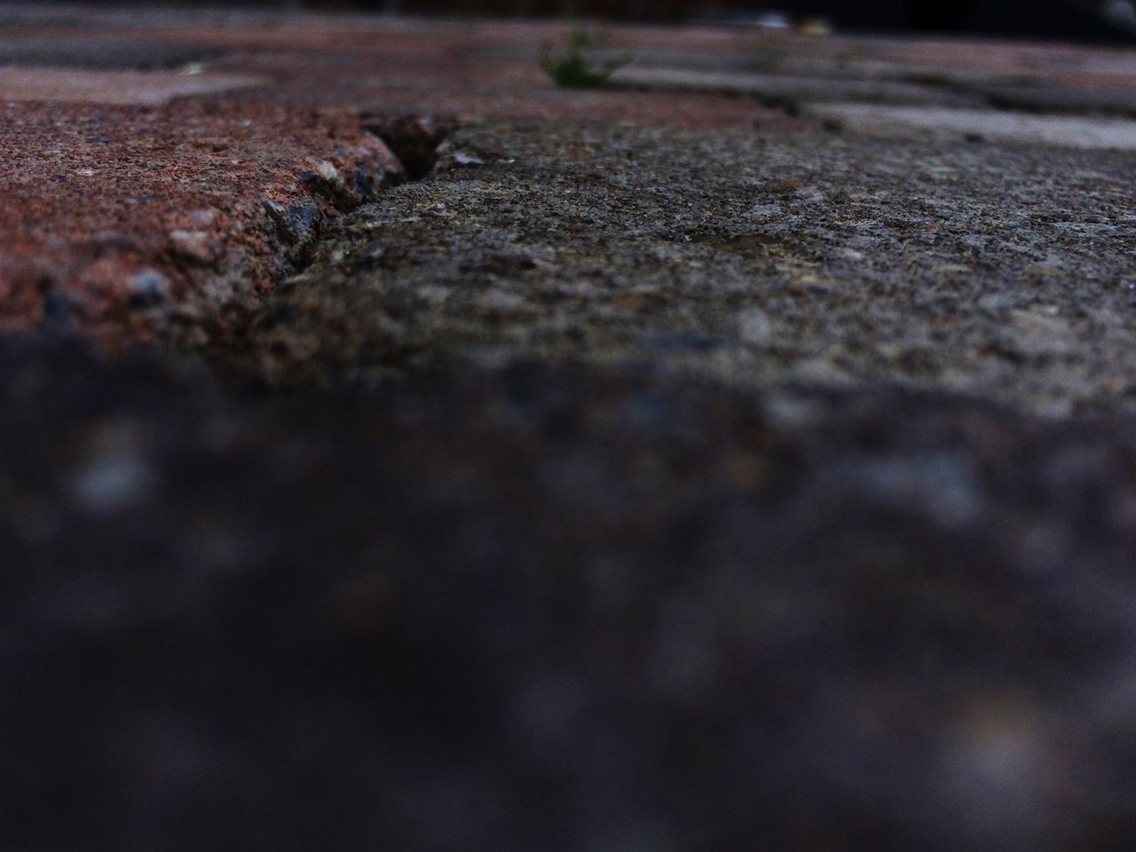 selective focus, surface level, day, no people, textured, outdoors, nature, close-up