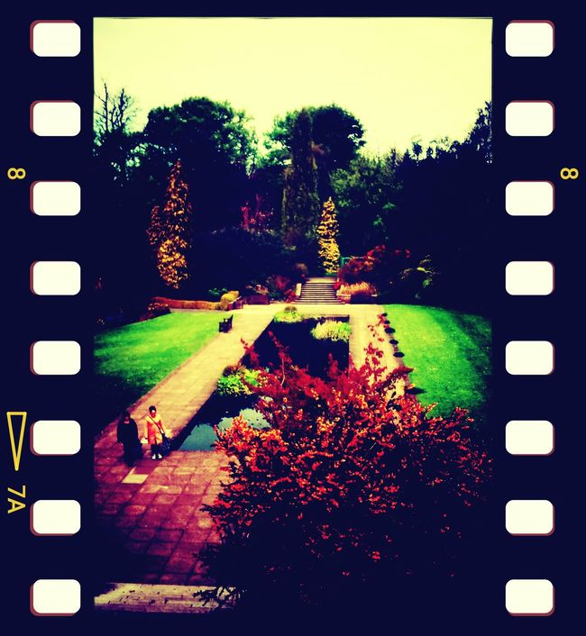 Enjoying The Sun Pigola Garden Escaping Walking Around Walking Around Samsungphotography Vignette For Android