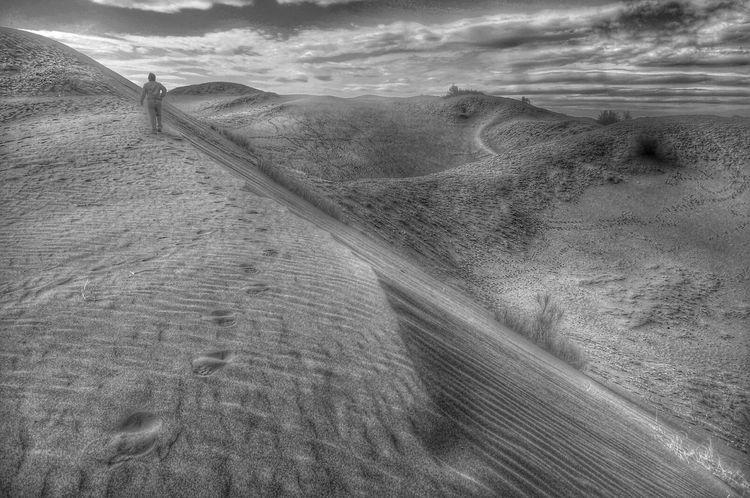 Desert Bnw Mendoza