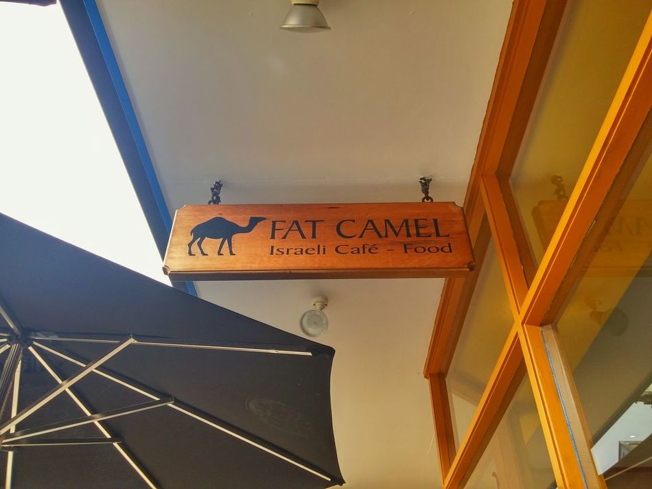 Hello World Welcome To My World stopped here for a Delicious Lunch at the Fat Camel in Whangarei nice wee Cafe 👍👍two Thumbs Up for a good Selection of Israeli Food and Coffee i Recommend it, if your up that way. Sorry no pic of the Lunch i was Famished and it was gone in Minutes !!!lol, youll just have to try it yourself (and yes, there was raw Beetroot 😀👍and heaps of Hummus !!! Foods From Around The World Dine In Tourist In My Own Country Tikitour Across New Zealand Roadtrip Outdoors Postcards From The Otherside Healthy Eating