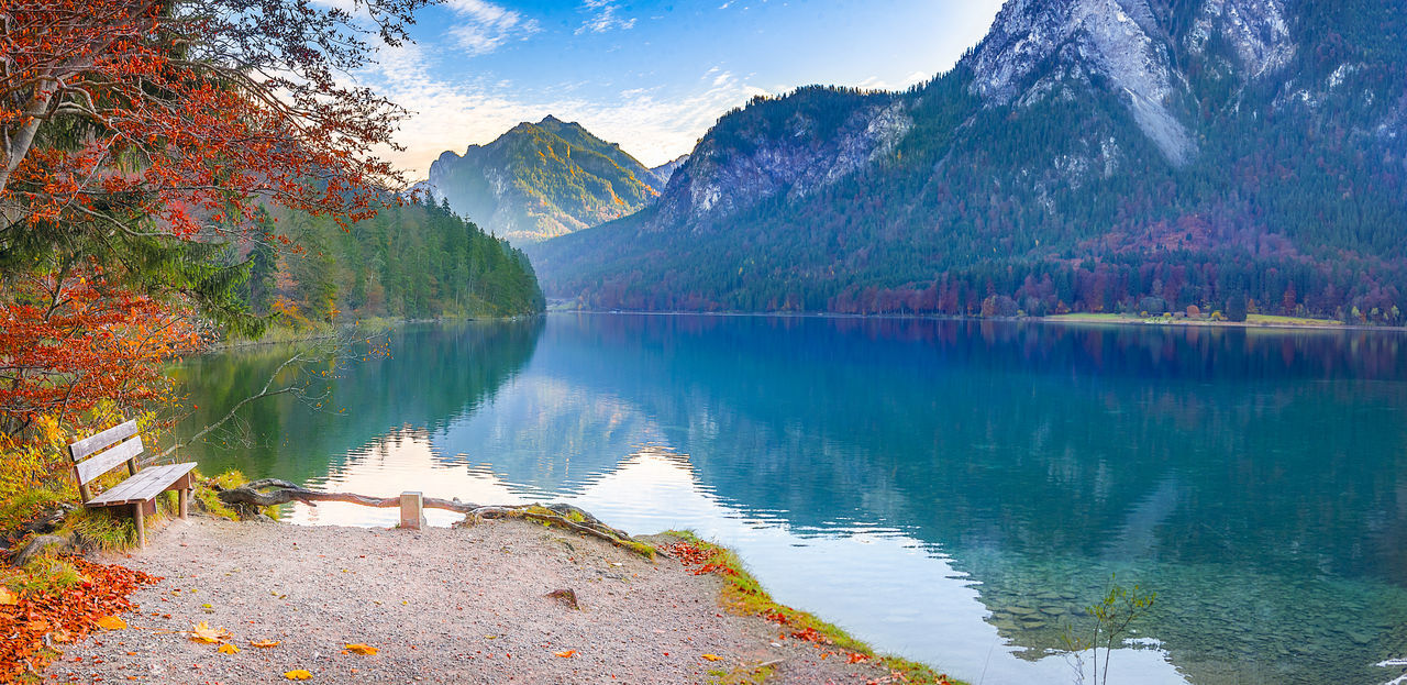 Wooden bench on Alpsee lake shore - Contemplative scenery with a wooden bench placed on the Alpsee lake shore, in autumn decor, with the Bavarian forests and mountains reflected in the water. Fall Colors Mirrored Relaxing Water Reflections Autumn Beauty In Nature Contemplative Forest Lake Mountain Mountain Range Nature No People Outdoors Reflection Restful Place Scenics Tranquil Scene Travel Destinations Tree Water